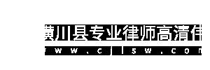 潢川县专业律师高清伟