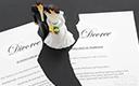 """论婚姻案件中""""保证书""""的效用"""