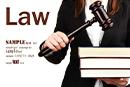 物权法司法解释:小区车位情况应向业主公开